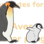 ヒナの可愛さに癒されるコウテイペンギンは世界一過酷な子育てをする鳥!?