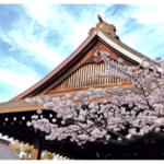 桜の開花が早い理由と全国の標本木一覧